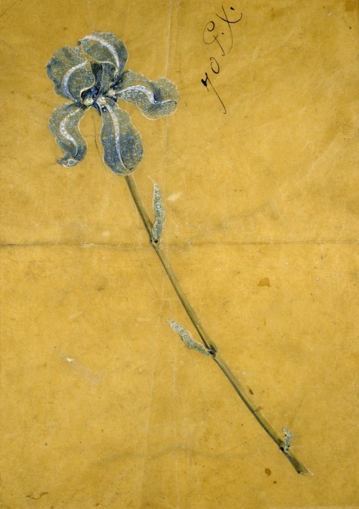 Tiffany iris corsage sketch