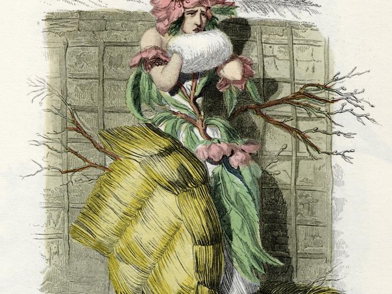 Les Fleures Animée: peach blossom